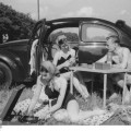 Picknick mit Volkswagen