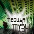 regula-mysli
